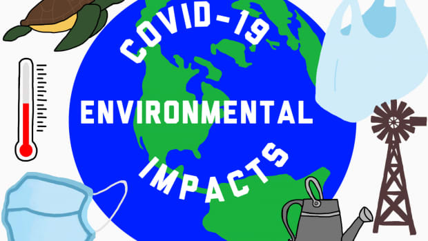 impact-of-covid-19-on-environment-and-climate-change