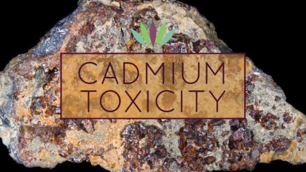 cadmium-toxicity