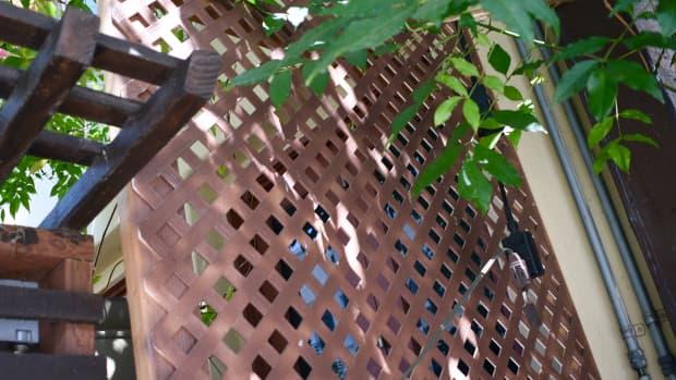 diy-balcony-trellis-how-to-build-a-simple-trellis-for-50100-or-less