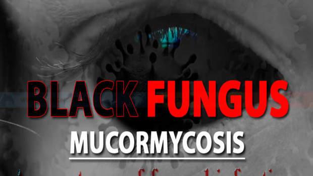 black-fungus