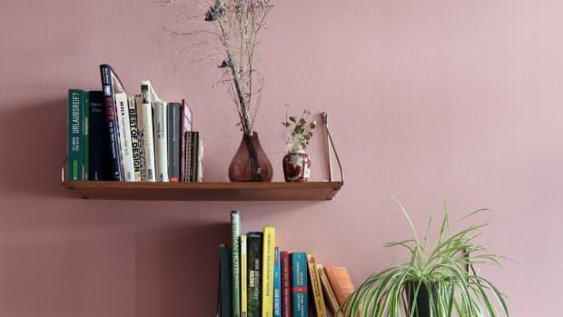 best-indoor-office-plants-low-light-and-low-maintenance