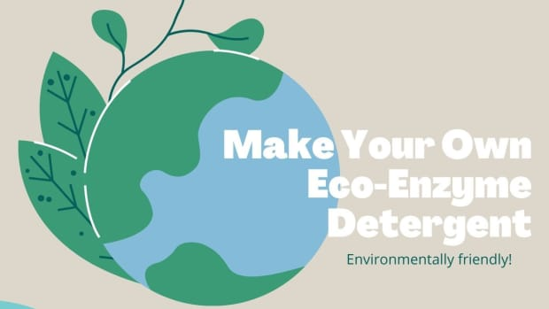 how-to-make-your-own-eco-enzyme-detergent