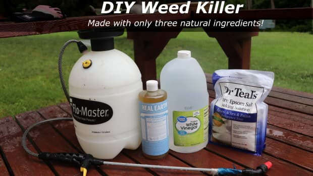how-to-get-rid-of-weeds-naturally-with-homemade-weed-killer