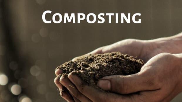 benefits-of-composting