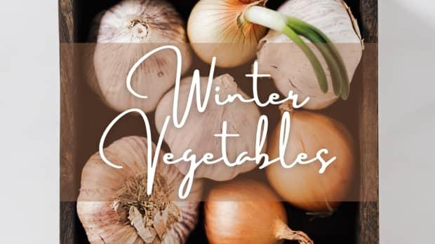 vegtables-in-winter