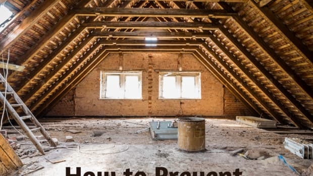 attic-mold-you-can-easily-prevent-it-from-growing--if-its-not-too-late-already
