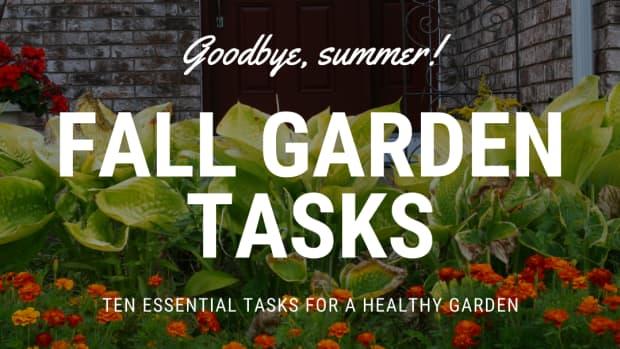fall-garden-tasks