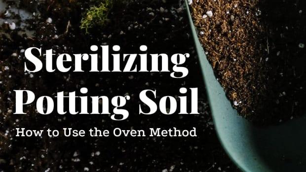 how-to-sterilize-potting-soil