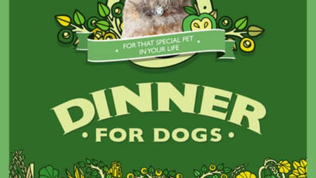 a-dogs-dinner