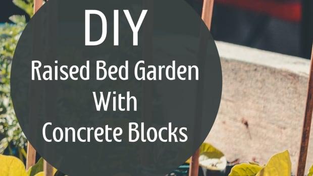 build-a-raised-bed-garden-quick-easy-cheap