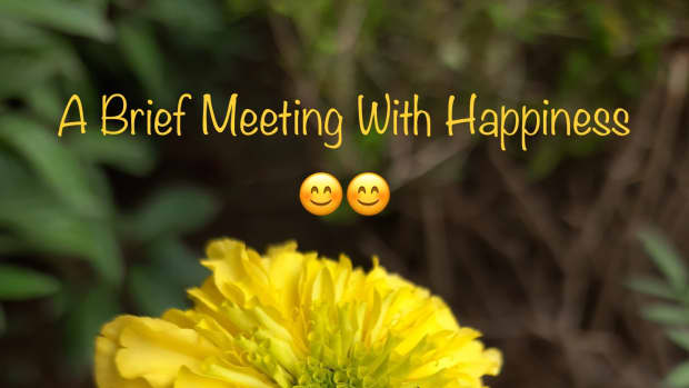 a-brief-meeting-with-happinesspoem