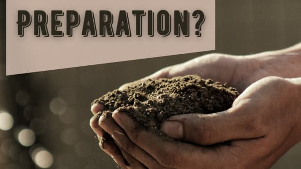 how-to-prepare-soil-for-planting