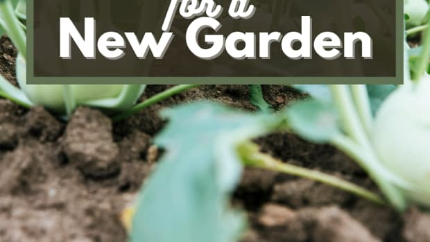 guide-for-starting-a-new-garden-how-to-get-the-soil-ready