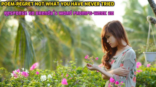 poem-regret-not-what-you-have-never-tried-response-to-brendas-word-prompt-week-20