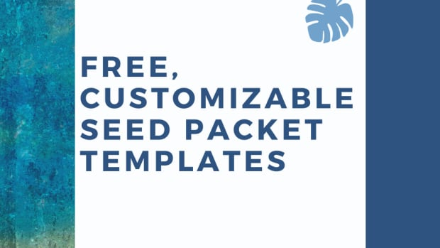 free-seed-packet-templates
