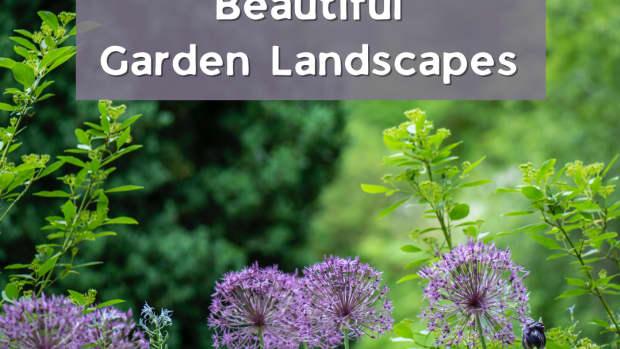 how-to-design-a-simple-garden-plan
