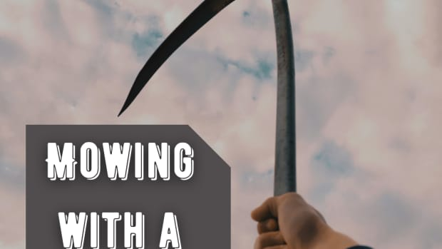 mowing-with-a-scythe