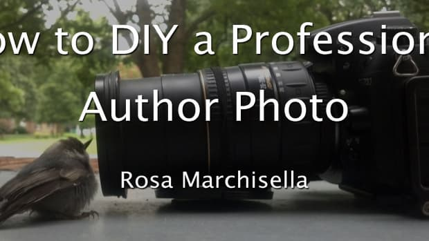 how-to-diy-a-professional-author-photo
