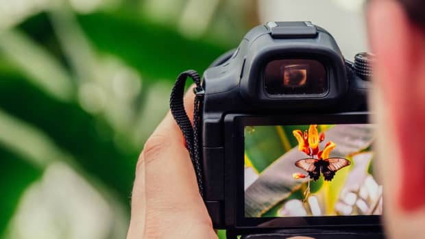 setting-the-tone-how-to-take-powerful-pictures