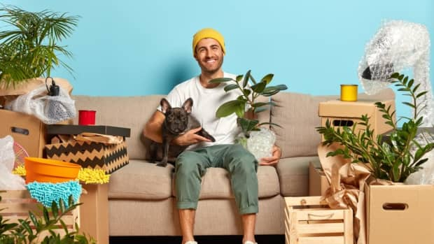 landlord-not-accepting-your-pet-7-tips-to-change-their-mind