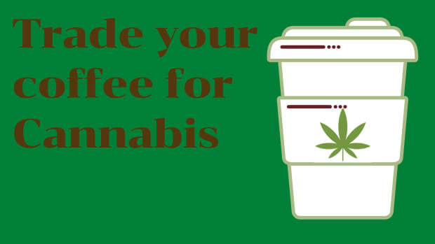 why-you-should-use-cannabis-daily-instead-of-coffee