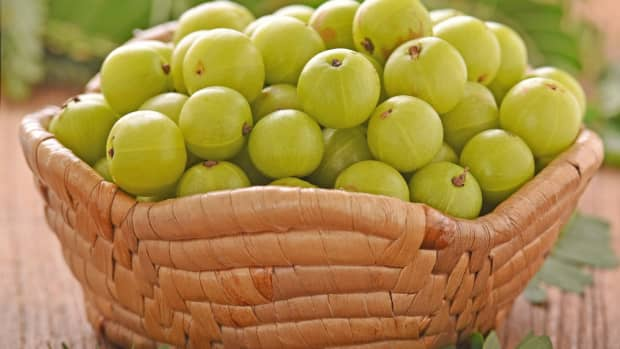what-is-indian-gooseberry-and-its-benefits
