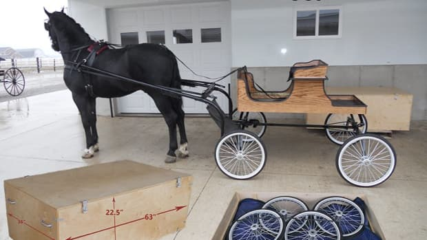 show-horse-buggy-in-a-box-collapsible-buggy-complete-with-travel-crate