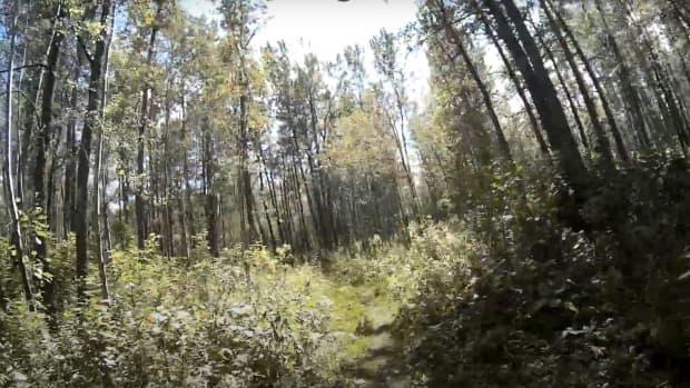 elk-island-national-park-trails-near-edmonton