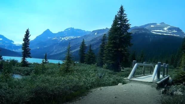 bow-glacier-falls-trail-in-banff-national-park