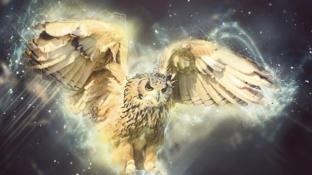 ten-truths-about-spirit-animals
