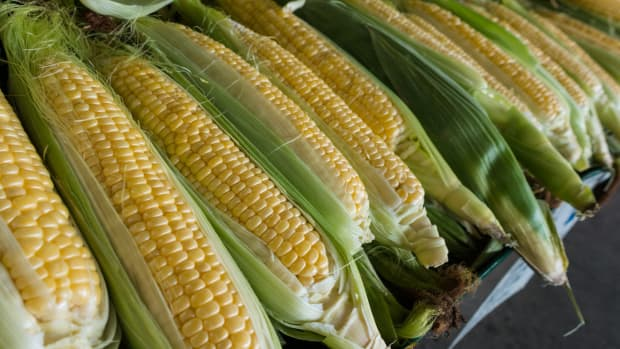 4-ways-to-control-corn-earworms-in-your-garden-naturally