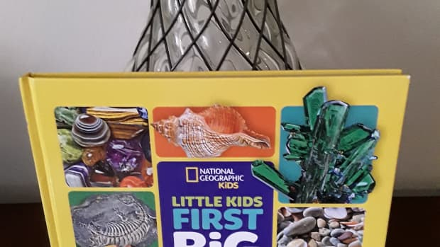 geology-for-the-little-ones-in-national-geographic-kids-first-big-book-of-rocks-minerals-and-shells