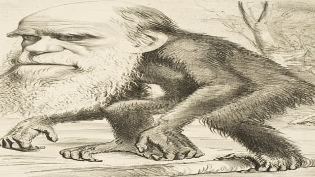 charles-darwin-made-a-monkey-out-of-me