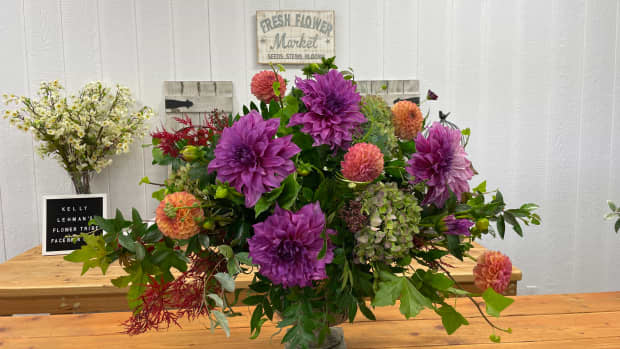 diy-dahlia-arranging-with-step-by-step-video