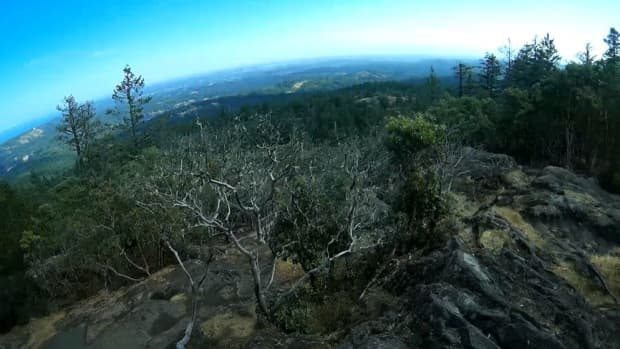 mount-work-regional-park-trail-hiking