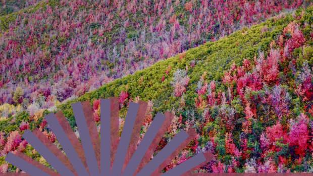 chasing-autumn-colors-in-utah