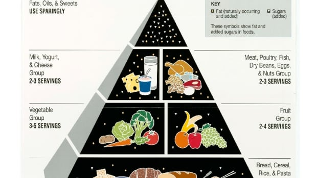 meaning-of-food-pyramid