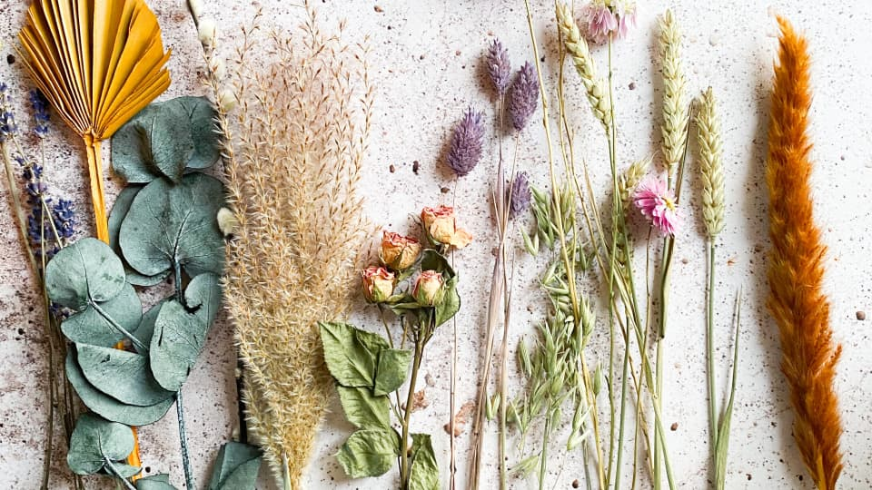 How to Preserve Flowers (6 Ways of Drying Flowers)
