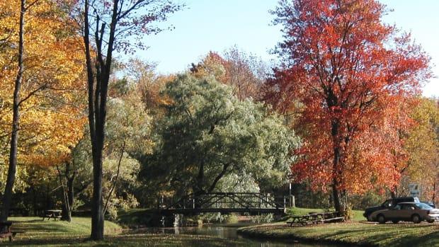 Little York Park, Cortland, NY