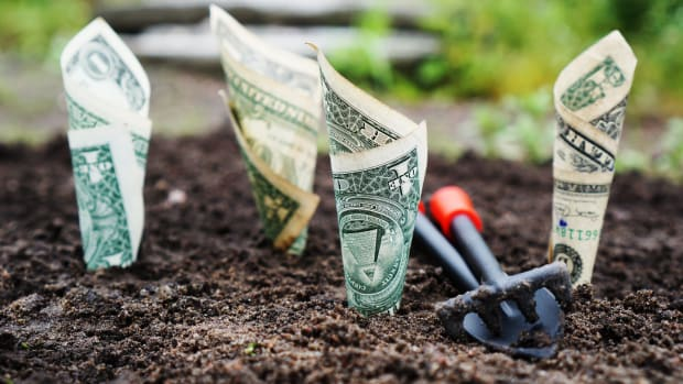 your-soil-isthe-foundation-of-your-homestead
