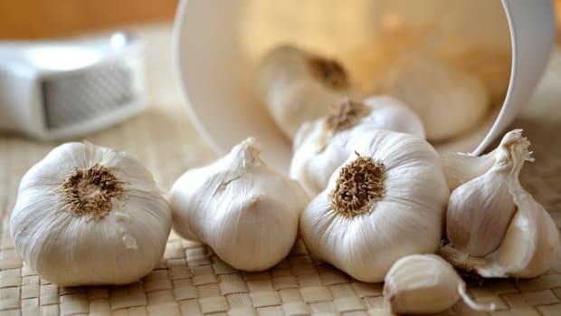 how-to-grow-garlic-like-an-expert