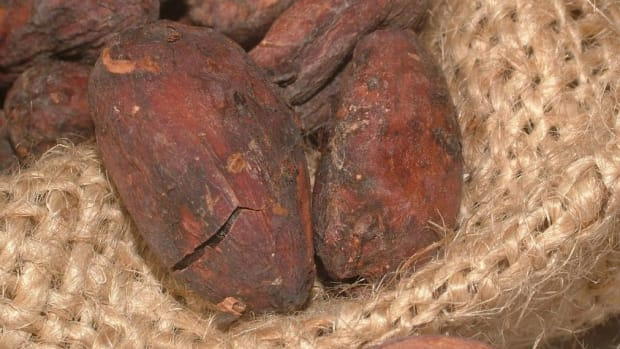 cacao-health-benefits