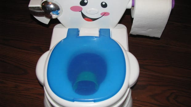 a-great-potty-chair-for-training-toddlers