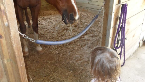 why-horses-are-good-for-little-girls