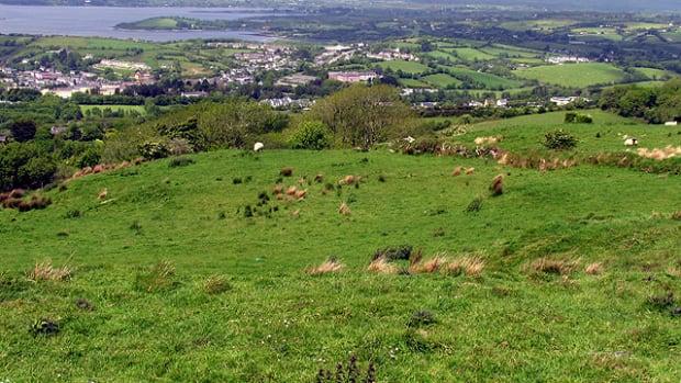 sustainable-agriculture-in-ireland-origin-green