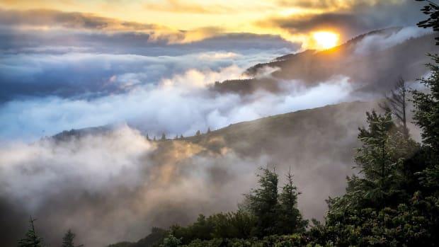misty-beauty