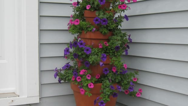 how-to-make-terra-cotta-flower-tower-with-annuals