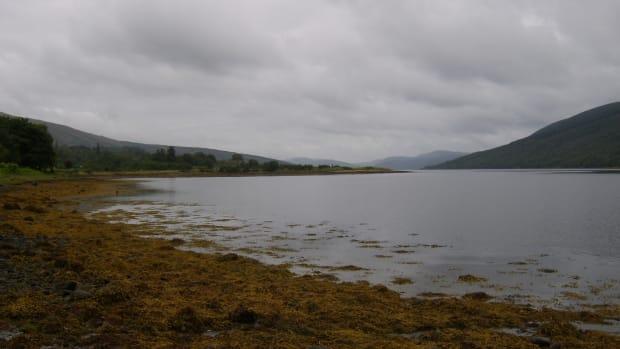 sea-fishing-loch-fyne-cairndow
