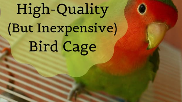 affordablebirdcages