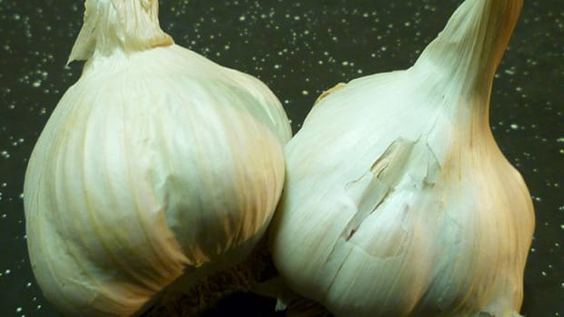 using-garlic-water-for-plants